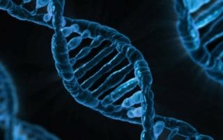 Terapia ARN