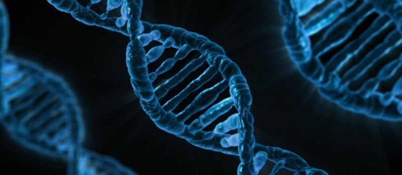 ¿Qué son las terapias ARN?